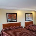 Motel Room Queen & Twin
