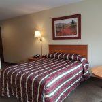 Motel Room Queen Bed - Poolside
